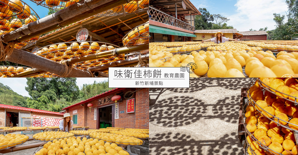 新竹新埔景點》味衛佳柿餅教育農園(免門票)│季節限定曬柿餅季節推薦觀光