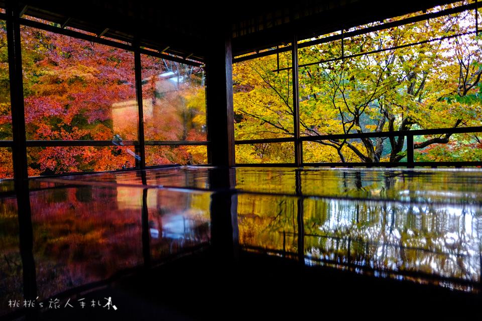 京都賞楓》八瀬瑠璃光院│一年只開放兩次,楓葉美景令人驚艷