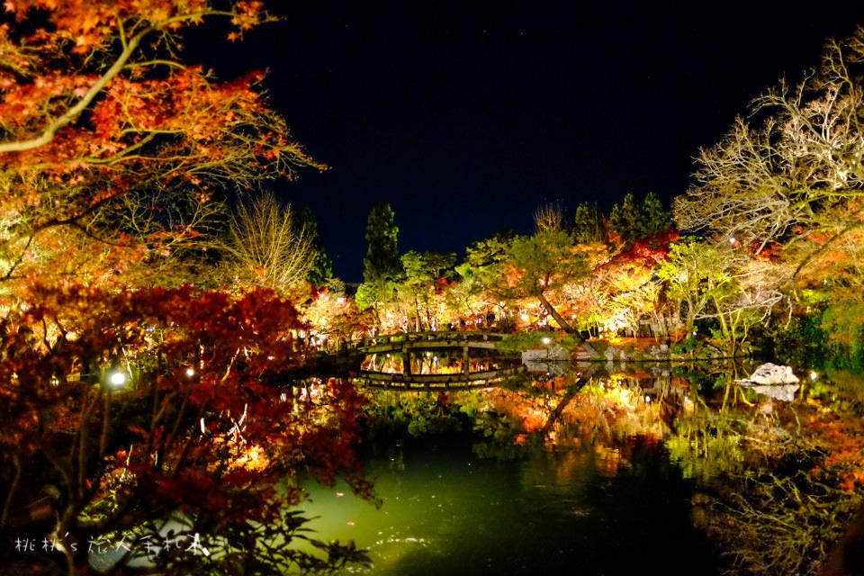 京都賞楓》永觀堂夜楓│賞楓不是白天的專利,紅葉夜晚也美麗