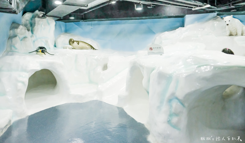 IG打卡景點》海生館隱藏版景點│極地探險冰山溜滑梯 在這裡!
