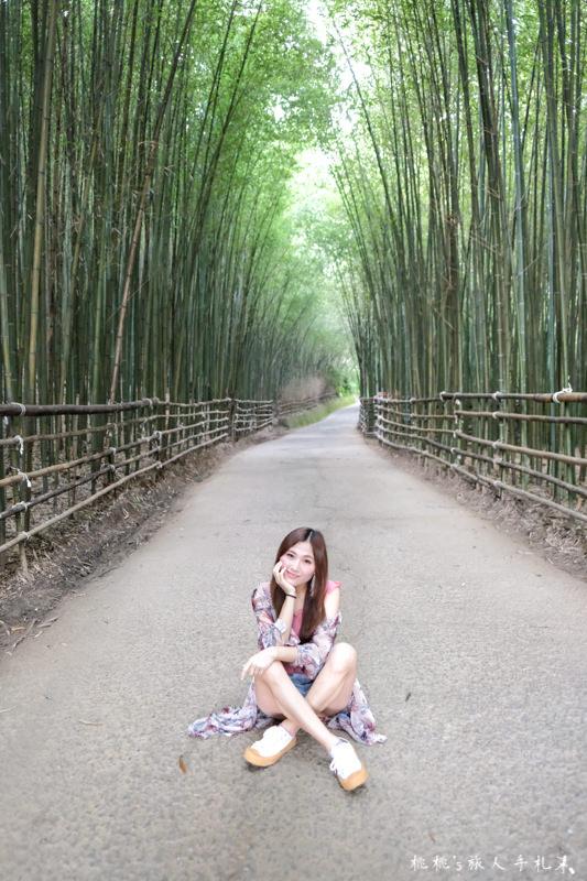 苗栗打卡景點》泰安竹林秘境 烏嘎彥竹林│穿過竹林隧道 拍出你的風格