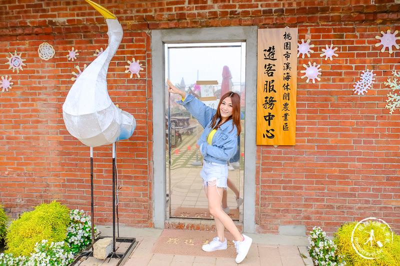 2019桃園彩色海芋季│交管停車接駁資訊 拍照亮點推薦!