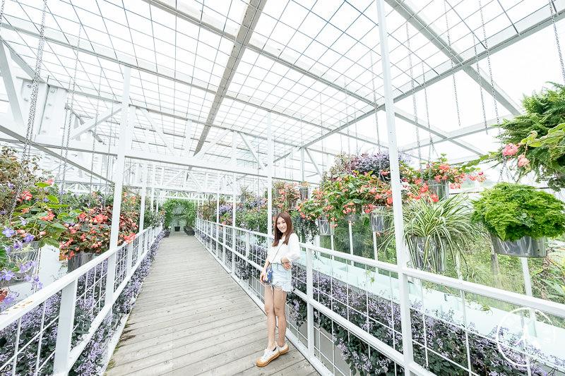 宜蘭景點》香草菲菲芳香植物博物館│天空花園步道這樣拍