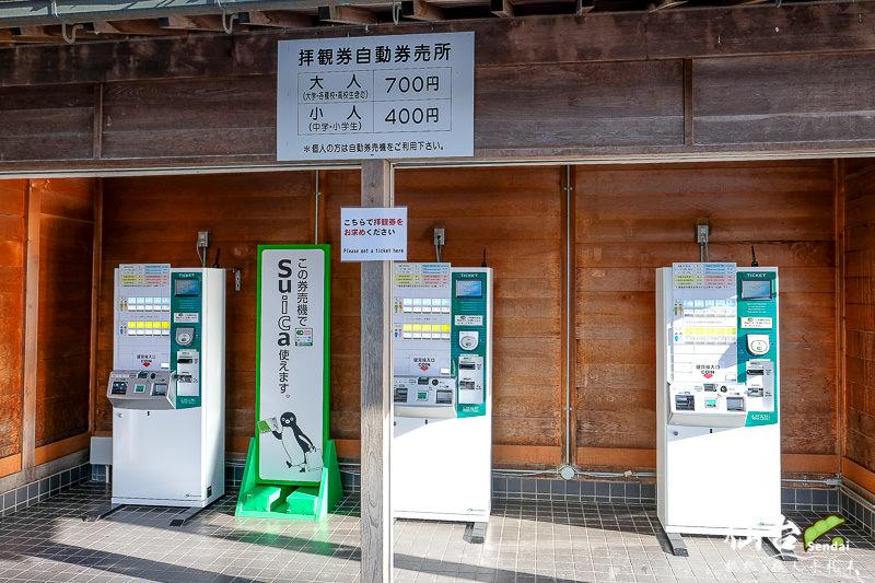 仙台景點》日本三景 松島半日遊│円通院、瑞巖寺、五大堂、松島魚市場