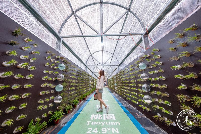 2019桃園農業博覽會》園區看點情報、交管停車、免費接駁車 詳細攻略