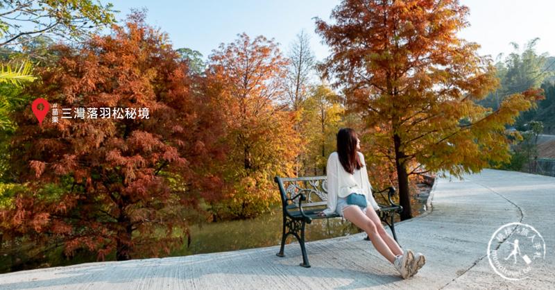 苗栗景點》三灣落羽松秘境│落羽松變紅的季節又到了,大家準備好了嗎?