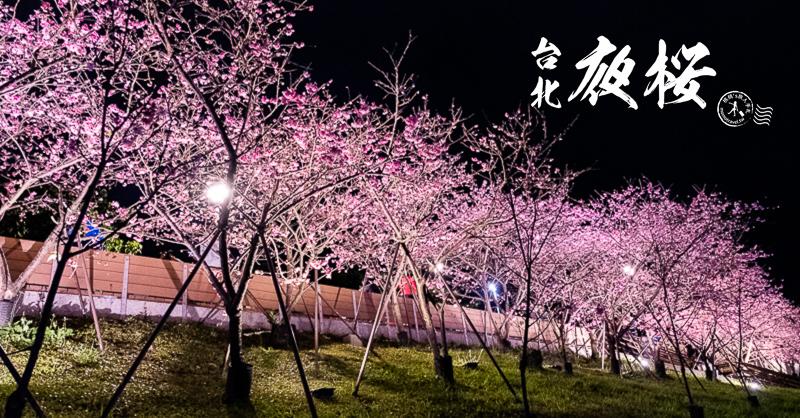 台北景點》內湖樂活夜櫻季│東湖櫻花林日夜都美麗