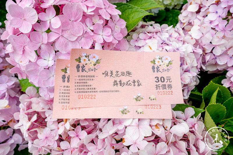 台北繡球花》陽明山 曹家花田香│2020最新花況分享
