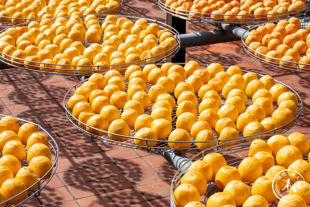 新竹新埔景點》金漢杮餅教育農園(免門票)│季節限定曬柿餅季節推薦觀光